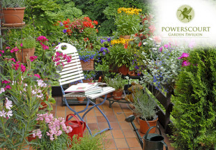€20 Gift Voucher for Powerscourt Garden Pavilion