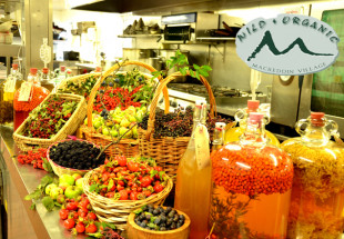 Wild Foods Master Class with 2 Course Lunch